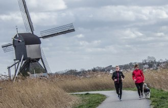 Jogging in Kinderdijk