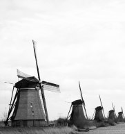Windmills Black and White